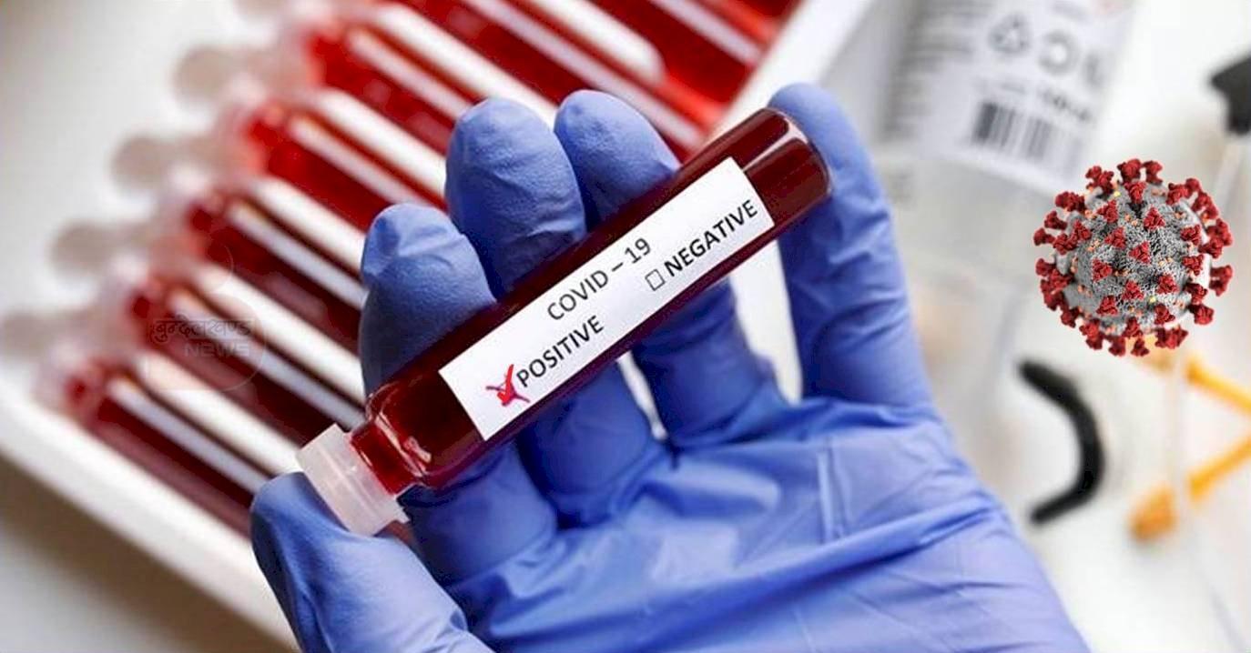 हमीरपुर में मिले 11 नये कोरोना संक्रमित मरीज