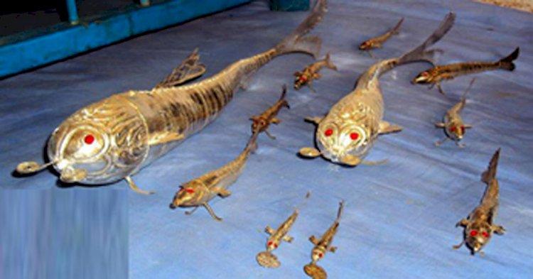 हमीरपुर में चांदी की मछली उद्योग में कोरोना की पड़ी मार