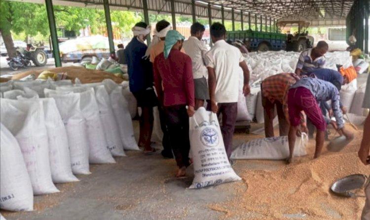 हमीरपुर : सरकारी खरीद केन्द्रों के बंद होने में 5 दिन शेष