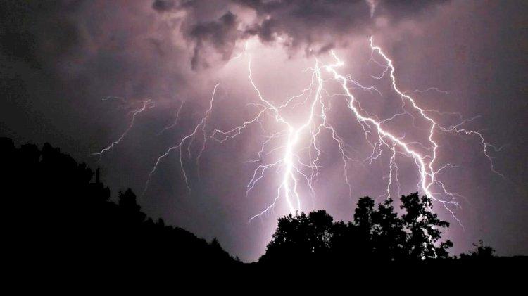 पन्ना में बारिश के साथ बिजली गिरने से 5 की मौत