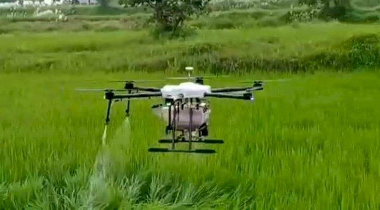 ड्रोन से फसलों पर कीटनाशी का छिड़काव कर बेहतर उत्पादन कर सकते हैं किसान..