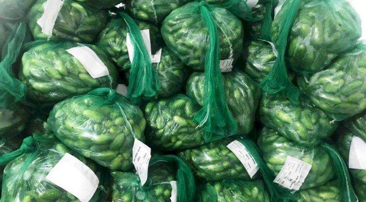 कोरोना का कहर थमते ही हरी सब्जियों ने ली दुबई की उड़ान